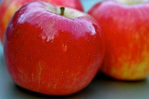Apples Increase Muscle Tone and Reduce Fat: Study